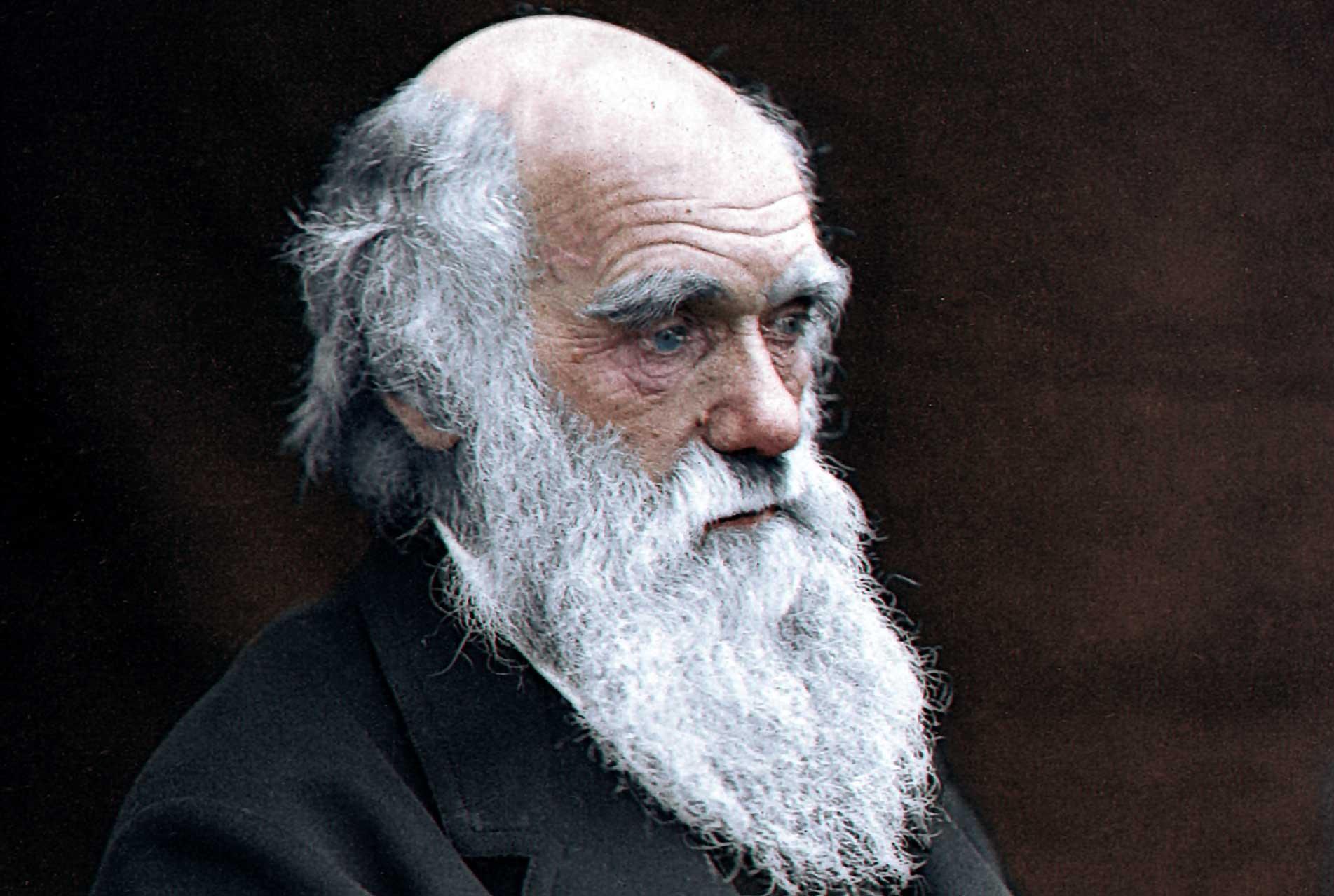 Чарлз-Дарвин