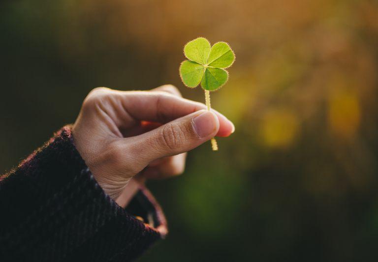 Что такое удача в жизни — талисманы, чтобы стать удачливым