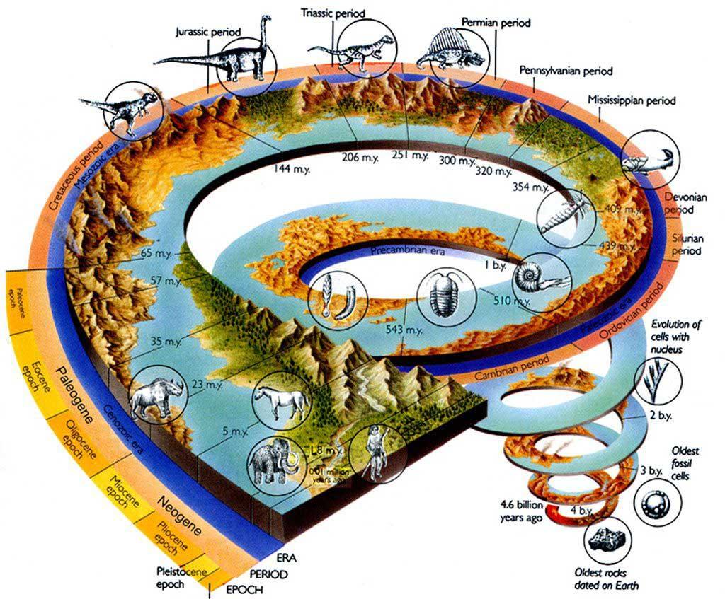 эволюция-на-планете