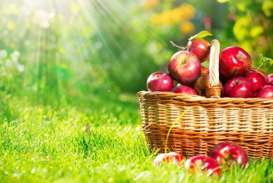 Спас Яблочный: обряды, приметы и магические ритуалы