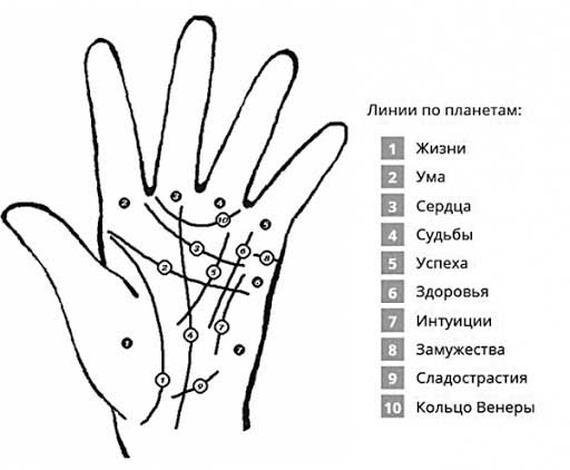 10-линий-хиромантии