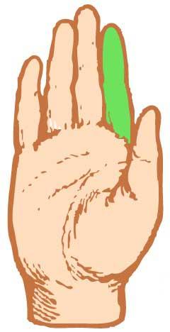 Хиромантия указательный палец юпитер
