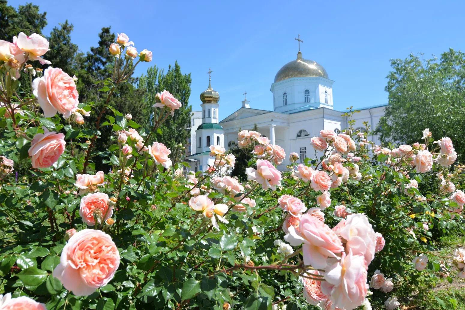 духов день в 2020 году какого числа у православных