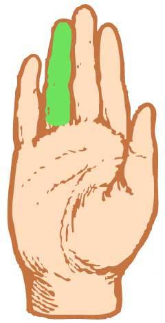 Хиромантия безымянный палец апполон