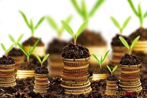 Приметы о деньгах – как не повернуть вспять денежные потоки
